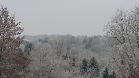 Und an Silvester durfte ich mich über ein klitzekleines bißchen Schnee freuen!